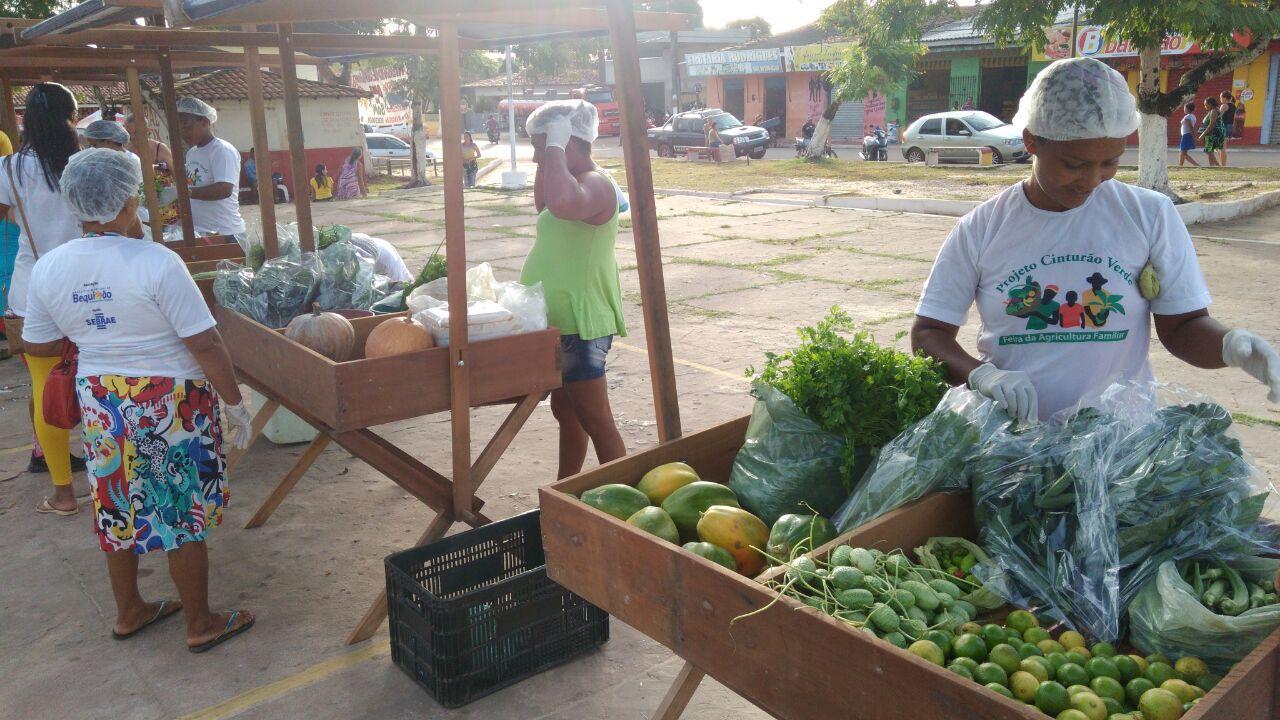 Photo of Projeto Cinturão Verde realiza mais uma Feira da Agricultura Familiar em Bequimão
