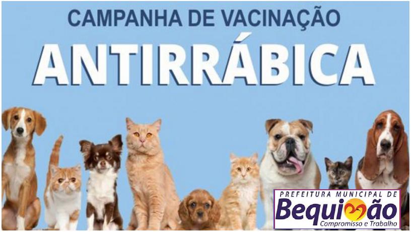 Photo of Bequimão: Campanha de Vacinação antirrábica tem início nesta quarta-feira (27)