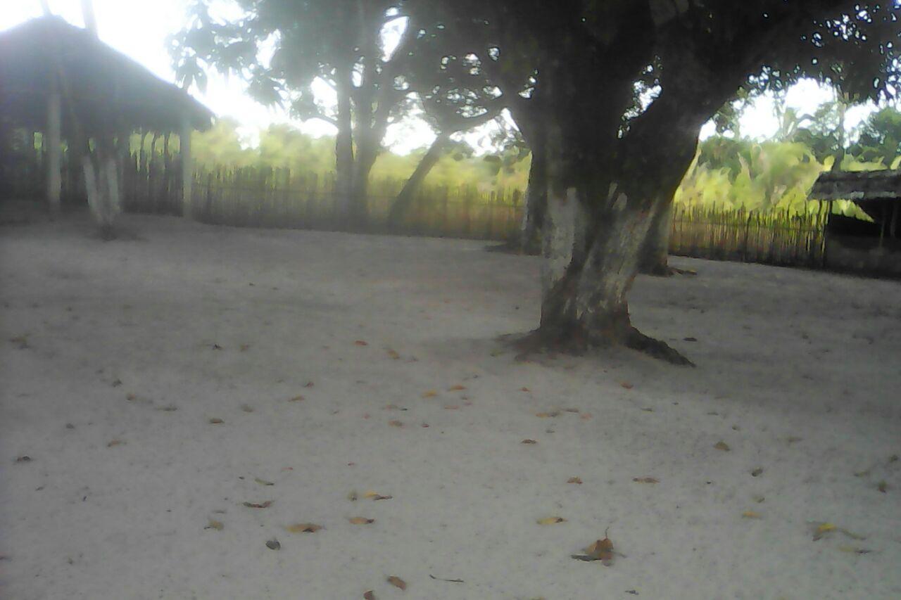Photo of Clube Toca do Leão na comunidade Floresta/Bequimão completa 18 anos neste sábado (2)