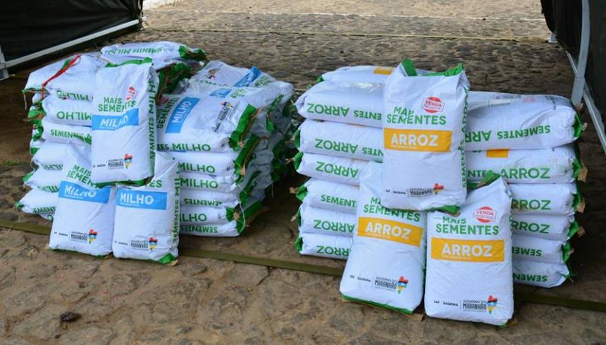 Photo of Prefeitura de Alcântara vai distribuir 12 toneladas de sementes aos agricultores do município