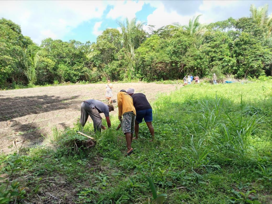 Photo of Mulheres Quilombolas vão produzir hortaliças que beneficiarão famílias carentes em Bequimão