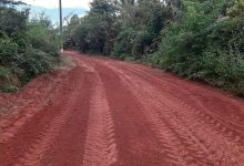 Foto de Prefeitura de Bequimão-MA trabalha na recuperação da estrada que liga Macajubal a Pontal